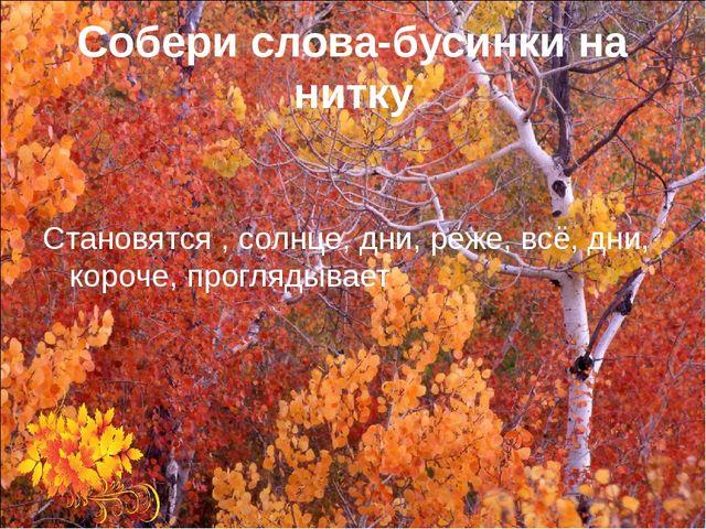 Собери слова-бусинки на нитку Становятся , солнце, дни, реже, всё, дни, короч...