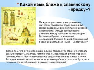 Какой язык ближе к славянскому «предку»? Между патриотически настроенными жит