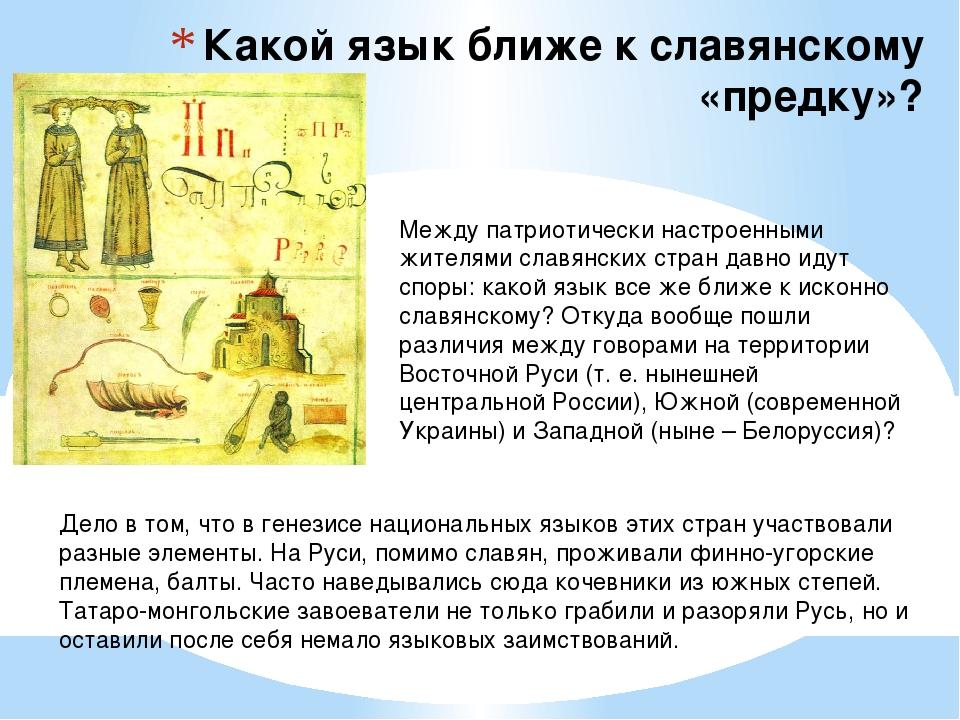 Какой язык ближе к славянскому «предку»? Между патриотически настроенными жит...