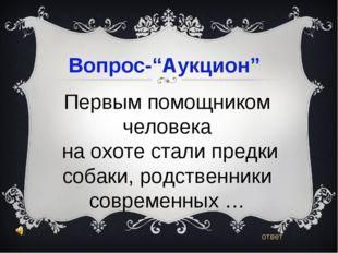 """Вопрос-""""Аукцион"""" ответ Первым помощником человека на охоте стали предки соба"""