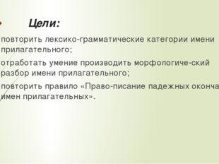Цели: повторить лексико-грамматические категории имени прилагательного; отраб