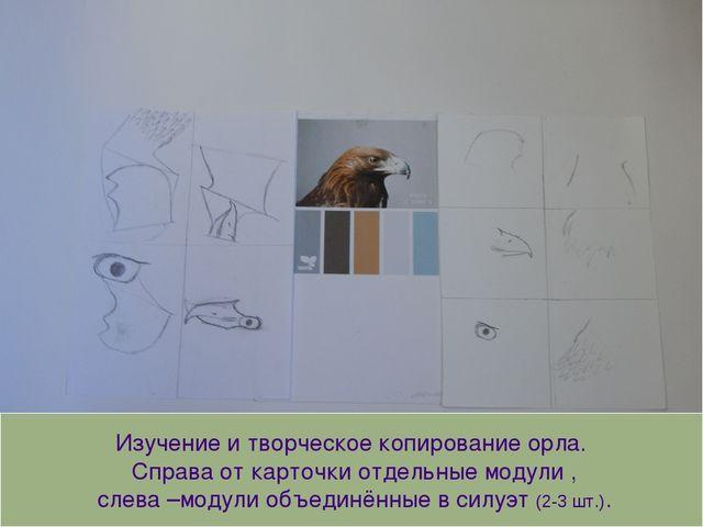Изучение и творческое копирование орла. Справа от карточки отдельные модули ,...