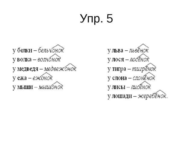 Упр. 5