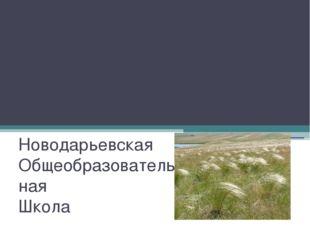 """Природоохранный конкурс """"КОВЫЛЬНАЯ СТЕПЬ"""" Новодарьевская Общеобразовательна"""