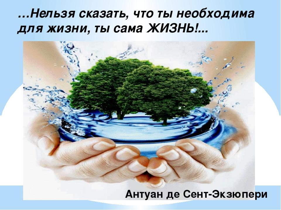 …Нельзя сказать, что ты необходима для жизни, ты сама ЖИЗНЬ!... Антуан де Сен...