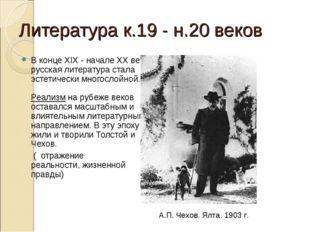 Литература к.19 - н.20 веков В конце XIX - начале XX века русская литература