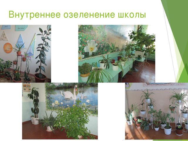 Внутреннее озеленение школы