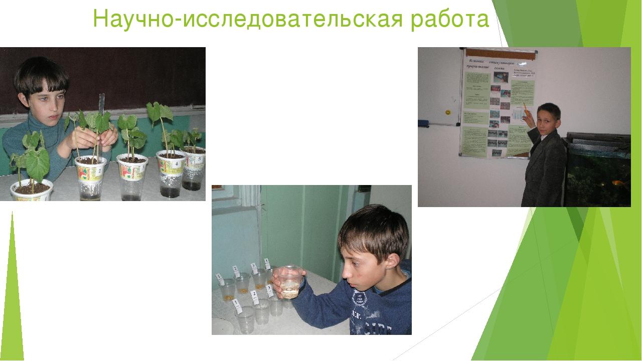 Научно-исследовательская работа