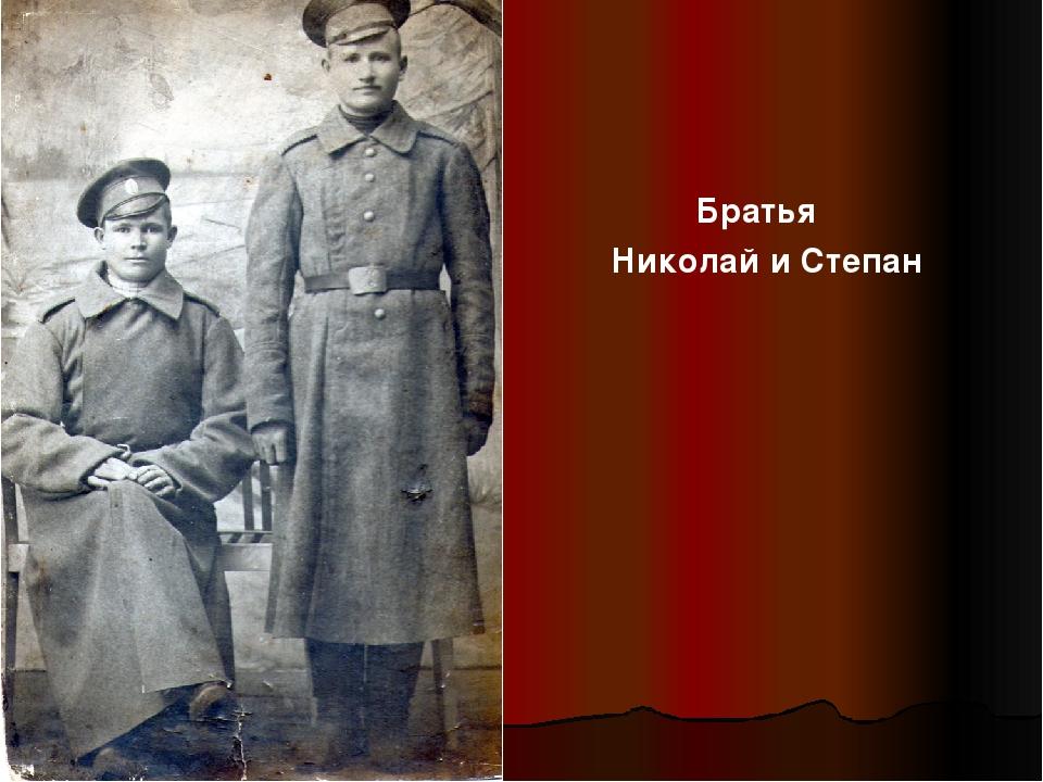 Братья Николай и Степан