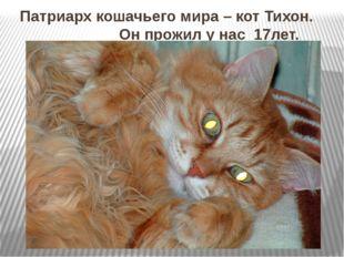 Патриарх кошачьего мира – кот Тихон. Он прожил у нас 17лет.