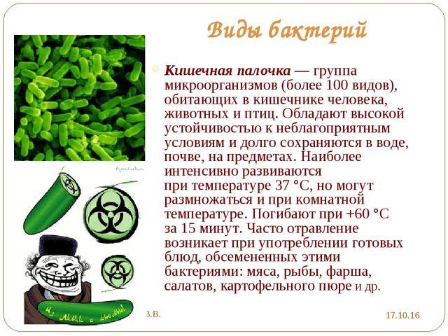Виды бактерий Кишечная палочка— группа микроорганизмов (более 100видов), об...