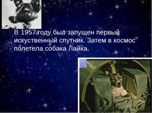 В 1957 году был запущен первый искуственный спутник. Затем в космос полетела