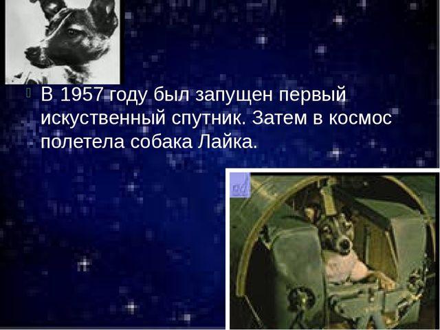 В 1957 году был запущен первый искуственный спутник. Затем в космос полетела...