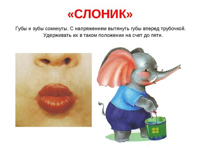 «СЛОНИК» Губы и зубы сомкнуты. С напряжением вытянуть губы вперед трубочкой....