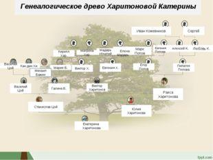 Древо ( Катя) Генеалогическое древо Харитоновой Катерины Иван Кожевников Серг