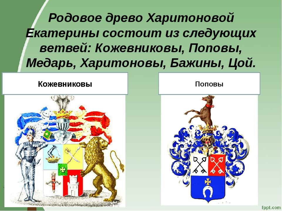 Родовое древо Харитоновой Екатерины состоит из следующих ветвей: Кожевниковы,...