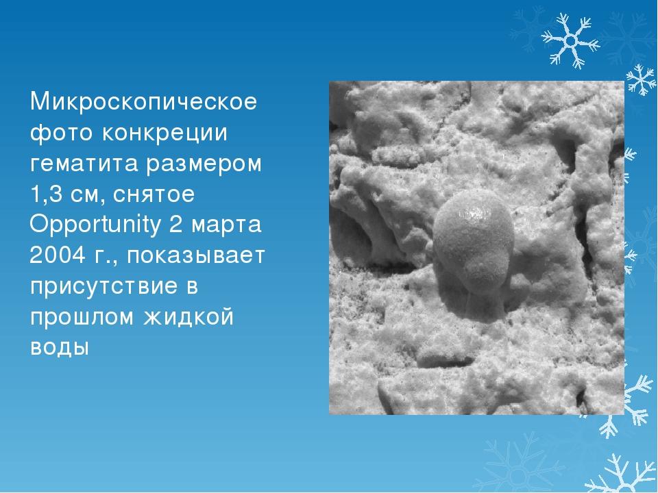 Микроскопическое фото конкреции гематита размером 1,3 см, снятое Opportunity...