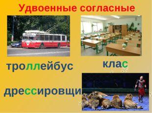 Удвоенные согласные троллейбус дрессировщик класс