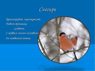 Снегирь Красногрудый, чернокрылый, Любит зёрнышки клевать, С первым снегом на