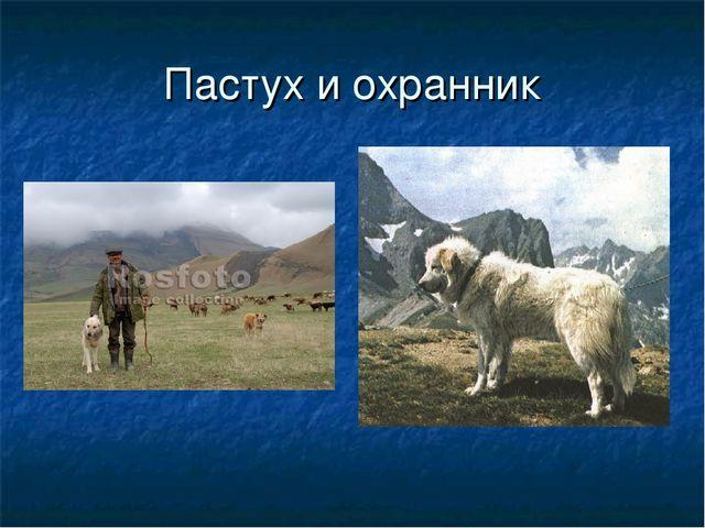 Пастух и охранник