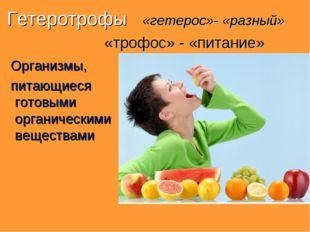 Гетеротрофы «гетерос»- «разный» «трофос» - «питание» Организмы, питающиеся го
