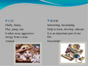 СAT Fluffy, funny. Play, jump, run. It takes away aggressive energy from a ma