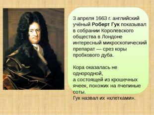 3 апреля 1663 г. английский учёный Роберт Гук показывал в собрании Королевск