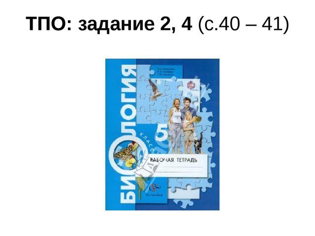 ТПО: задание 2, 4 (с.40 – 41)