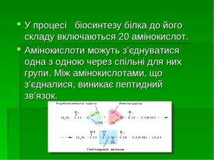 У процесі біосинтезу білка до його складу включаються 20 амінокислот. Аміноки