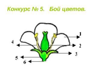 Конкурс № 5. Бой цветов.