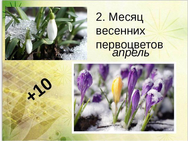 2. Месяц весенних первоцветов +10 апрель