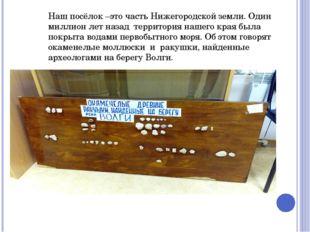 Наш посёлок –это часть Нижегородской земли. Один миллион лет назад территория