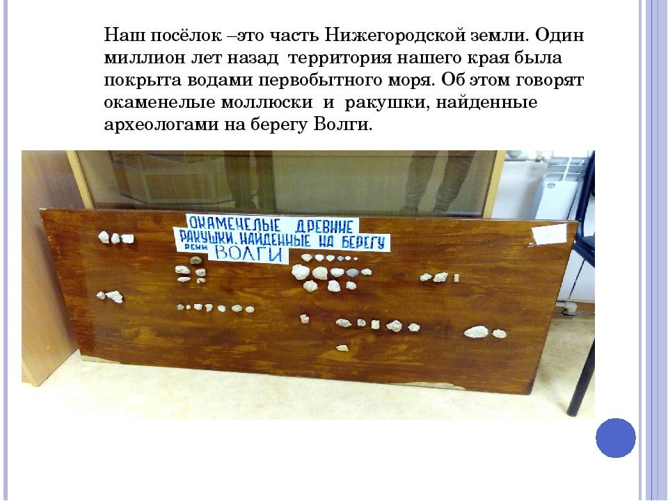 Наш посёлок –это часть Нижегородской земли. Один миллион лет назад территория...