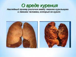 О вреде курения Наглядный пример различия между легкими курильщика и легкими