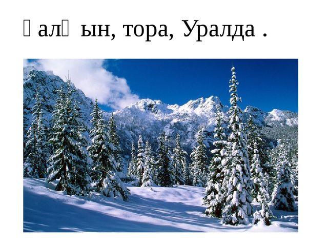 һалҡын, тора, Уралда .