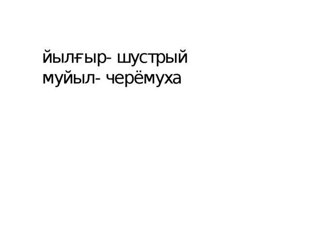 йылғыр- шустрый муйыл- черёмуха