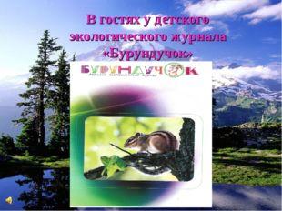 В гостях у детского экологического журнала «Бурундучок»