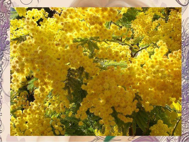 Месяц март, сады пусты, Ну какие тут цветы, Но у нас назло морозу К празднику...