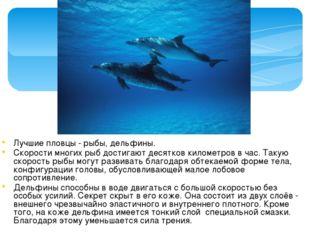 Лучшие пловцы - рыбы, дельфины. Скорости многих рыб достигают десятков киломе