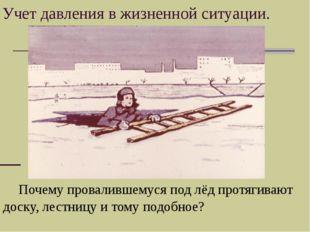 «…Лиса действительно пришла через несколько дней, села на берегу и опять заго