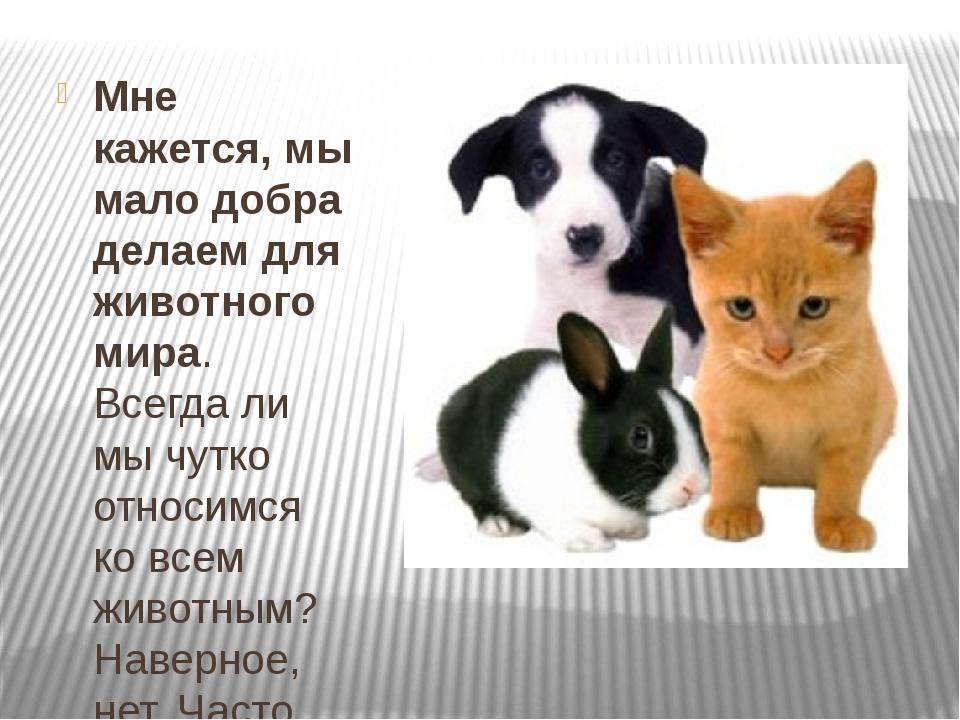 Мне кажется, мы мало добра делаем для животного мира. Всегда ли мы чутко отн...