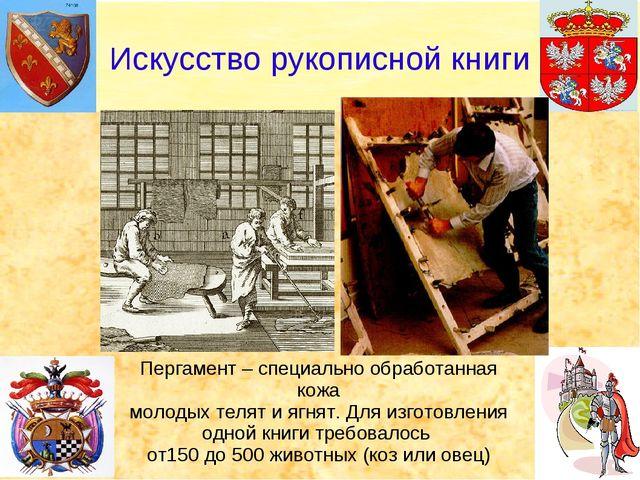 Искусство рукописной книги Пергамент – специально обработанная кожа молодых т...
