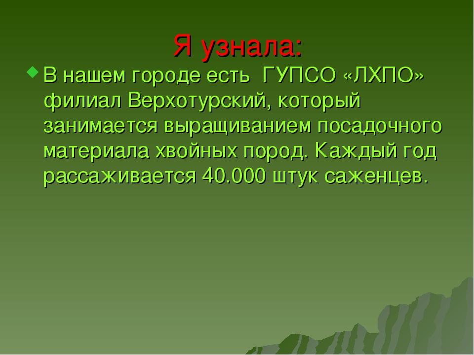 Я узнала: В нашем городе есть ГУПСО «ЛХПО» филиал Верхотурский, который зани...