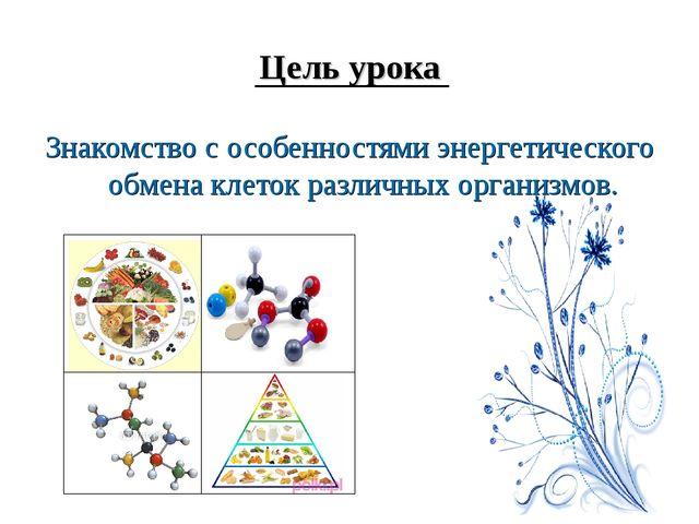 Цель урока Знакомство с особенностями энергетического обмена клеток различных...
