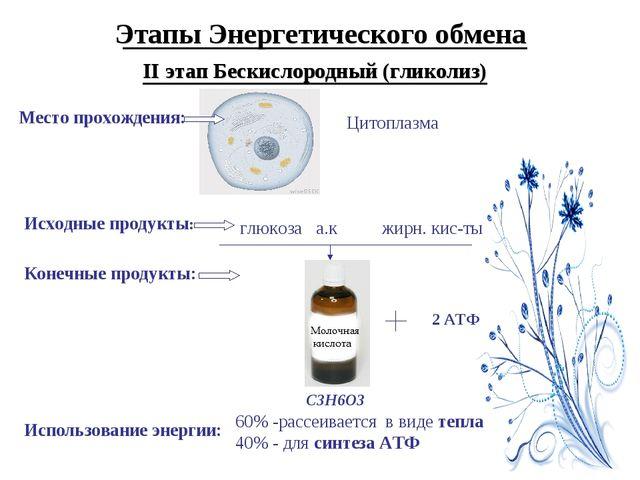 Этапы Энергетического обмена II этап Бескислородный (гликолиз) Место прохожде...