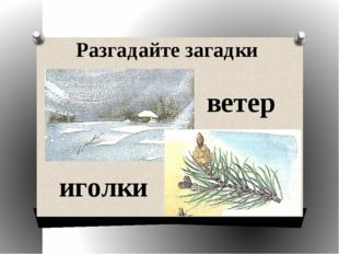 Разгадайте загадки ветер иголки
