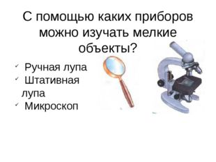 С помощью каких приборов можно изучать мелкие объекты? Ручная лупа Штативная
