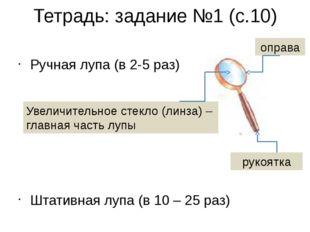 Тетрадь: задание №1 (с.10) Ручная лупа (в 2-5 раз) Штативная лупа (в 10 – 25