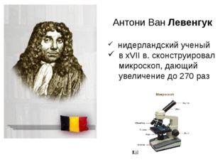 Антони Ван Левенгук нидерландский ученый в хVII в. сконструировал микроскоп,