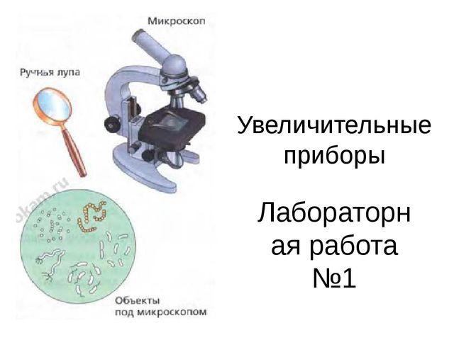Увеличительные приборы Лабораторная работа №1